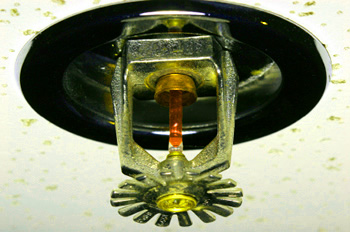 this is a sprinkler head - look for them when buying a condo or coop loft or apartment